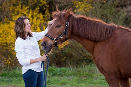 therapie paarden