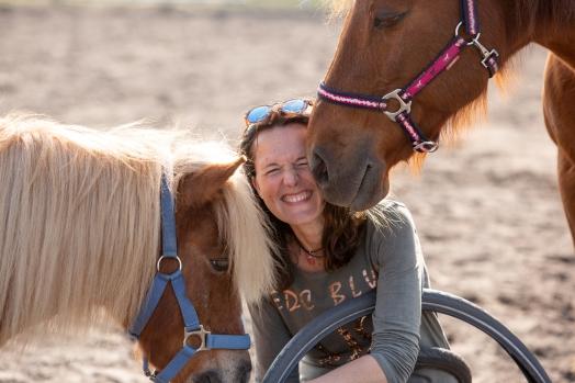 workshop coaching met paarden